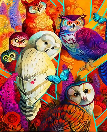 Картина по номерам 40x50 Разноцветные совы